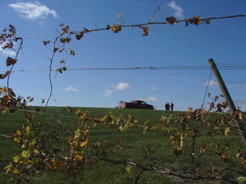 Nissen Winery Hartington, NE